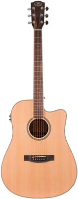 Guitare E/A JM Forest SD28