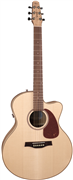 Guitare E/A Seagull Performer Mini-Jumbo Flame Mapple QIT